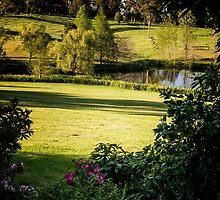 0298  Jenny's Garden by Peter Hogarth