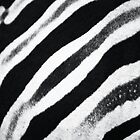 Zebra Stripes I by Beth Wold