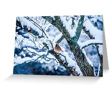 Female Cardinal In Snowy Tree Greeting Card