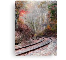 Autumn Tracks Canvas Print