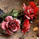 5.11.2014: Abandoned Plastic Flowers by Petri Volanen