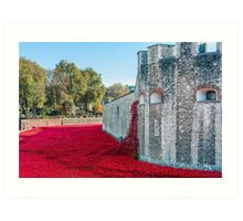 Cascading Poppies, Tower of London Art Print