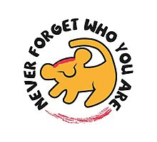 Never Forget Who You Are Photographic Print