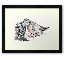 Dove Love 1 Framed Print