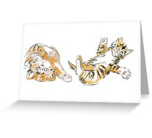 Take me to the Kittens Greeting Card