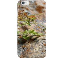 Picture Perfect 2.0 iPhone Case/Skin