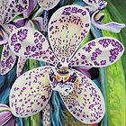 Violet Dotted Orchid by Jane Girardot
