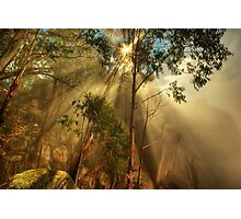 Clearing mist, Mount Buffalo Photographic Print