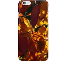 Bold and Colourful - Take 3 iPhone Case/Skin