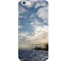 Brilliant Sunshine After the Snowstorm – a Winter Beach on Lake Ontario iPhone Case/Skin