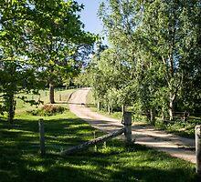 0319  Jenny's Garden by Peter Hogarth