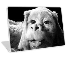 Falkor The Luck Dragon From The Neverending Story Design Laptop Skin