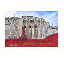 Poppies at The Tower Of London Art Print