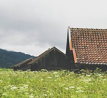 Three Bavarian Barns by Bethany Helzer