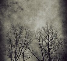 Dark trees 2 by AnnArtshock