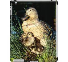 Cane mère poule / Mother hen duck iPad Case/Skin