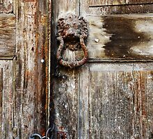 Lion at the Door by aeolia