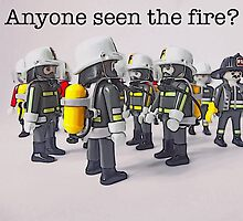 Anyone seen the fire? by Tim Constable