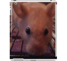 Examples For Demmi Ross 1 iPad Case/Skin