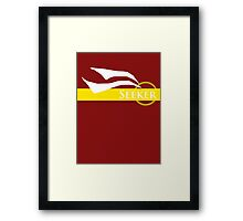 Quidditch Seeker Framed Print