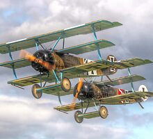 Two Little Fokkers - HDR - Dunsfold 2014 by Colin J Williams Photography