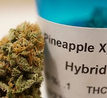 Pineapple Express by HysteriaWear