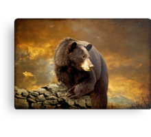 The Bear Went Over The Mountain Metal Print