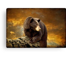 The Bear Went Over The Mountain Canvas Print