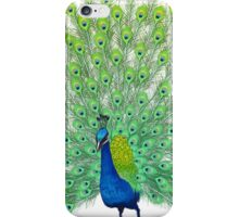 Colorful Peacock Painting Art iPhone Case/Skin