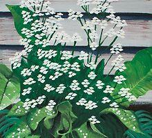 Flowering horseradish plant by steveralston