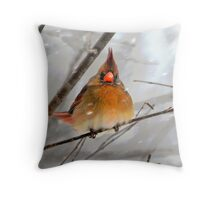 WHAT THE ... ????? Throw Pillow