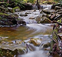 The Waters Are Dancing In The Ballroom by TonyCrehan