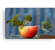 Friendship! - It Takes More Than Caring...Card - Silvereye - NZ Canvas Print