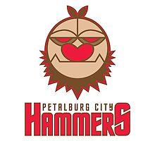 Petalburg City Hammers by Tal96