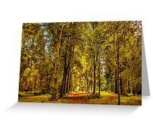Woodland Pathway Greeting Card