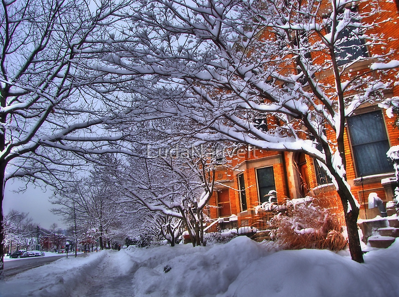 All this snow by LudaNayvelt
