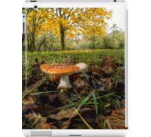 Amanita Fall Colors iPad Case/Skin