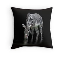 The Zebra and The Mill Pond Throw Pillow