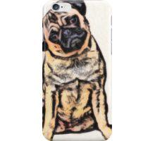 pug 16 iPhone Case/Skin