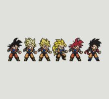Retro Game Saiyan Evolution by SecretNinja
