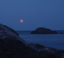 Red Moon by annaiva