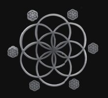 THE FLOWER OF LIFE by mutantra