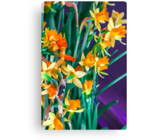 ABSTRACT DAFFODILS IN ORANGE Canvas Print