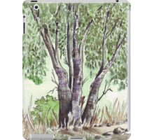 Blue gum trees across the road from my studio iPad Case/Skin