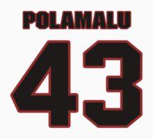 NFL Player Troy Polamalu fortythree 43 by imsport