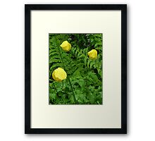 NATURE 16 Framed Print