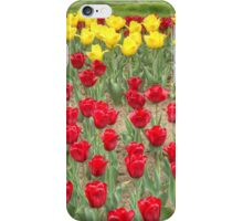 Lots of Red Tulips 2 iPhone Case/Skin