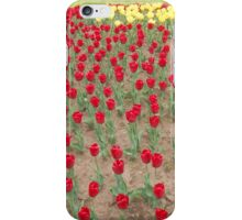 Lots of Red Tulips 4 iPhone Case/Skin