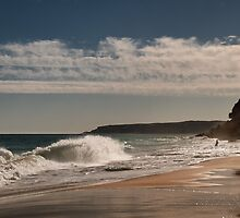 Facing the Waves by Kasia-D