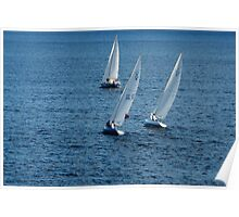 Into The Wind - Crisp White Sails On a Caribbean Blue Poster